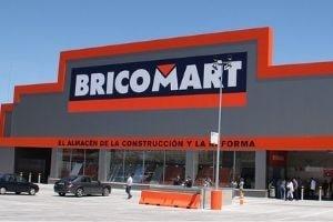 Pulidora Bricomart